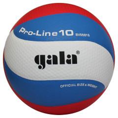 Волейбольный мяч Gala Pro-Line BV5581S (Профессиональная модель)